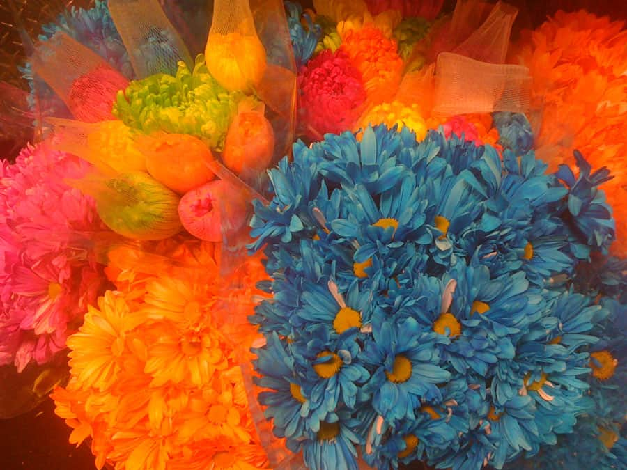 Color Palette:  Birthday Flowers!