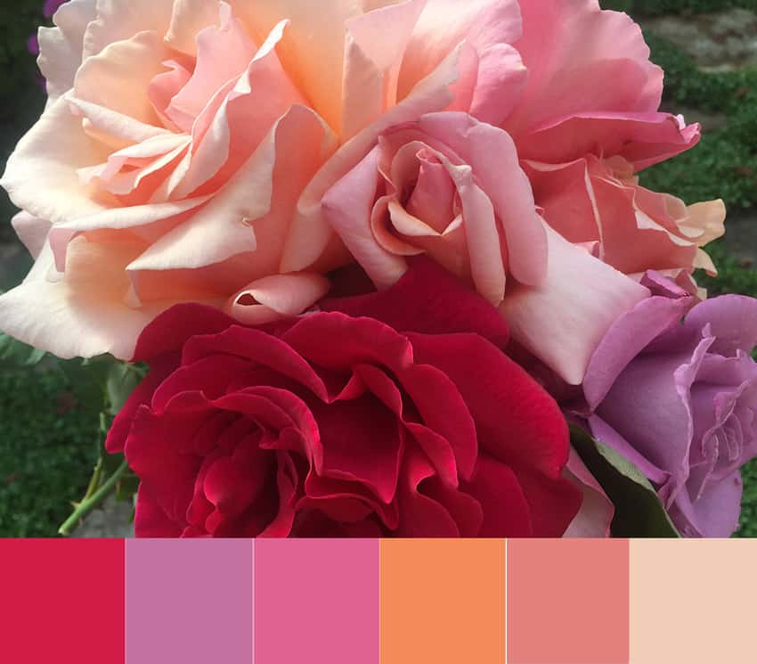 Mother's Day Bouquet Color Palette
